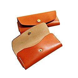 G.velox Sunglasses Case glasses holder Genuine leather ( Black/Orange ) (Orange)