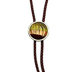 Tamarusan Braid Bolo Tie Rainbow Orange Gold Kyoto Craftsmen Silk
