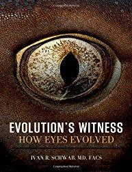 Evolution's Witness: How Eyes Evolved