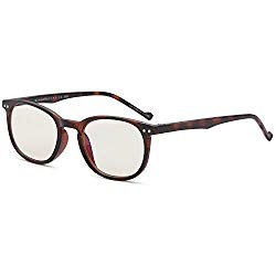 Gamma RAY 010 Slim Vintage Computer Readers Reading Glasses Anti Reflective Anti Glare Anti Eyestrain Lens for Digital Screens, UV400 Protection – 0.00x in Tortoise